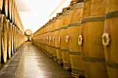 Wine aging in wooden barrels (Chateau Lynch-Bages Winery, France)