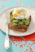 Whole wheat toast with lima beans and poached egg