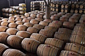 Wine barrels at the Nederburg Winery, Paarl, Western Cape, SA