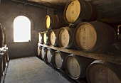 Wine barrels in the cellar (Steenburg, Constantia, Western Cape, SA)