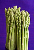 Green asparagus against a purple background