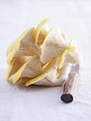 Lemon oyster mushrooms