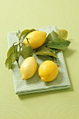 Lemons with leaves on a checked cloth