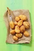 New potatoes on a jute sack