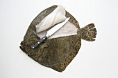 A filleted turbot
