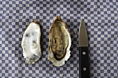 A opened oyster and an oyster knife