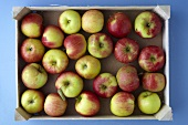 A crate of apples