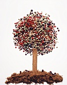 A tree shape made of various spices