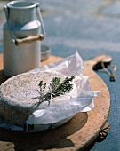 Cheese with herbs on a piece of paper