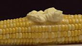 Gekochter Maiskolben mit schmelzender Butter und Salz