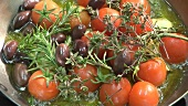 Frying tomatoes, garlic, olives and herbs