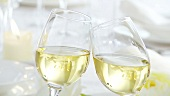 Clinking glasses of white wine