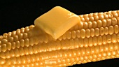 Knob of melting butter on cob of corn