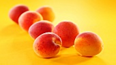 Fresh apricots on yellow background