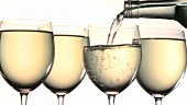 Four glasses of white wine