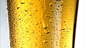 A glass of beer (detail)