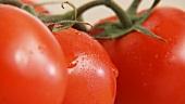 Knoblauchzehe und Tomaten