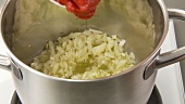 Preparing tomato sauce: frying onions and garlic and adding tomato puree