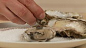 Fresh, opened oysters being arranged in a plate of sea salt