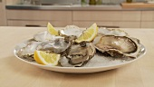 Fresh oysters with lemon wedges and sea salt