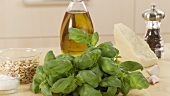 Ingredients for pesto alla genovese