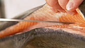 Salmon being filleted - fillet being removed from the spine