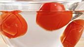 Überbrühte Tomaten in kaltem Wasser abschrecken
