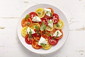 Red and yellow tomatoes with mozzarella and basil
