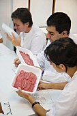 Sensor analysis, Meat products taste, Euskadi, Spain