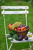 Basket of fruit on garden chair