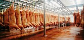 Slaughterhouse, Huesca province, Spain