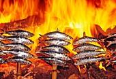 Sardinen am Spiess über Feuer