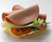 Open Bologna Sandwich