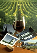 Wine and Postcards; Vineyard