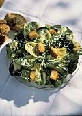 Caesar Salad on a Glass Plate; Roll