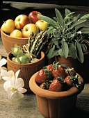 Clay Pots with Fresh Fruit and Vegetables