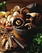 Preparation for a Mushroom Dish