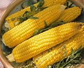 Corn on the Cob with Fresh Herbs