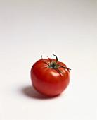 One Beefsteak Tomato