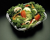 Tossed Salad in Plastic Container
