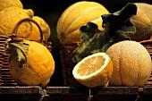 Lemon and Melon Still Life