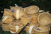 Baskets for picking Coffee Beans