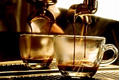 Extracting Coffee into Glass Cup