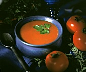Tomato Soup with single Leaf Garnish