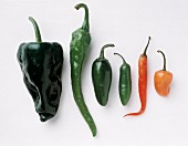 Six Types of Chili Peppers