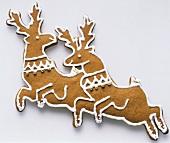 Reindeer gingerbread