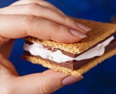 S'more with hand