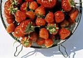 Fresh Strawberries in a Metal Strainer