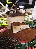 Coffee Bean Grinder with Ground Coffee Beans and Whole Coffee Beans