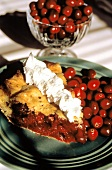 A Slice of Cranberry Pie with Fresh Cranberries